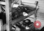 Image of Belsen Concentration camp Germany, 1945, second 13 stock footage video 65675053644