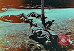 Image of German soldiers killed by Czechs, in Pilsen Czechoslovakia, a month be Pilsen Czechoslovakia, 1945, second 7 stock footage video 65675055606