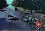 Image of German soldiers killed by Czechs, in Pilsen Czechoslovakia, a month be Pilsen Czechoslovakia, 1945, second 59 stock footage video 65675055606