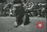 Image of marble game Asbury Park New Jersey USA, 1950, second 14 stock footage video 65675058227