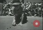 Image of marble game Asbury Park New Jersey USA, 1950, second 15 stock footage video 65675058227