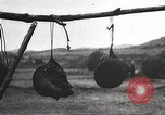 Image of heads of executed marauders Manchuria China, 1930, second 36 stock footage video 65675060902