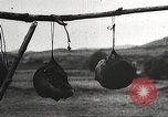 Image of heads of executed marauders Manchuria China, 1930, second 39 stock footage video 65675060902