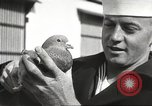 Image of carrier pigeons Washington DC USA, 1923, second 53 stock footage video 65675060986