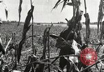 Image of Japanese troops China, 1939, second 30 stock footage video 65675060995