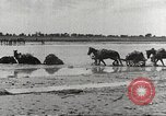 Image of Japanese troops China, 1939, second 55 stock footage video 65675060995