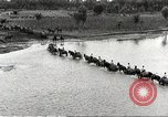 Image of Japanese troops China, 1939, second 14 stock footage video 65675060996