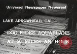 Image of Dog water skiing California United States USA, 1934, second 3 stock footage video 65675061011
