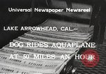 Image of Dog water skiing California United States USA, 1934, second 4 stock footage video 65675061011