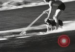 Image of Dog water skiing California United States USA, 1934, second 16 stock footage video 65675061011