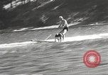 Image of Dog water skiing California United States USA, 1934, second 27 stock footage video 65675061011