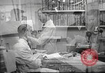 Image of navy personnel United States USA, 1953, second 1 stock footage video 65675061079