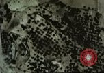 Image of ground targets Sicily Italy, 1943, second 40 stock footage video 65675061166