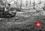 Image of Allied prisoners of war Netherlands, 1944, second 9 stock footage video 65675061174