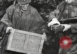 Image of Allied prisoners of war Netherlands, 1944, second 14 stock footage video 65675061174