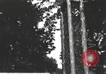 Image of Hitler Youth camp Offenburg Germany, 1937, second 41 stock footage video 65675061201