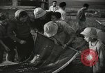 Image of Kibbutz Israel, 1956, second 20 stock footage video 65675061324