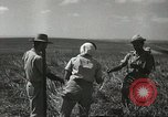 Image of Kibbutz Israel, 1956, second 54 stock footage video 65675061324