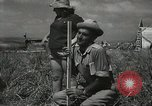 Image of Kibbutz Israel, 1956, second 61 stock footage video 65675061324