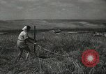 Image of Kibbutz Israel, 1956, second 62 stock footage video 65675061324
