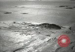Image of penguins McMurdo Sound Antarctica, 1955, second 12 stock footage video 65675061344