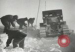 Image of penguins McMurdo Sound Antarctica, 1955, second 49 stock footage video 65675061344