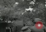 Image of lady marines United States USA, 1942, second 28 stock footage video 65675061479