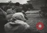 Image of prisoners Poland, 1945, second 30 stock footage video 65675061517