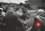 Image of prisoners Poland, 1945, second 31 stock footage video 65675061517