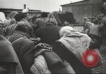 Image of prisoners Poland, 1945, second 33 stock footage video 65675061517