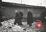 Image of prisoners Poland, 1945, second 36 stock footage video 65675061517
