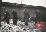 Image of prisoners Poland, 1945, second 38 stock footage video 65675061517