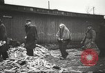 Image of prisoners Poland, 1945, second 41 stock footage video 65675061517
