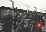 Image of prisoners Poland, 1945, second 49 stock footage video 65675061517