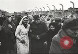 Image of prisoners Poland, 1945, second 54 stock footage video 65675061517