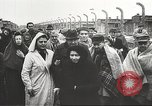 Image of prisoners Poland, 1945, second 55 stock footage video 65675061517