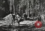 Image of United States troops China-Burma-India Theater, 1944, second 18 stock footage video 65675061534