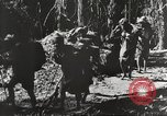 Image of United States troops China-Burma-India Theater, 1944, second 25 stock footage video 65675061534