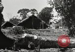 Image of Allied soldiers Burma, 1944, second 1 stock footage video 65675061538