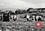 Image of Frank Merrill Myitkyina Burma, 1944, second 20 stock footage video 65675061540