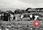 Image of Frank Merrill Myitkyina Burma, 1944, second 21 stock footage video 65675061540