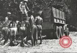 Image of United States soldiers New Guinea, 1943, second 26 stock footage video 65675061549