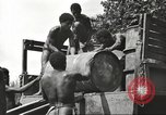 Image of United States soldiers New Guinea, 1943, second 37 stock footage video 65675061549