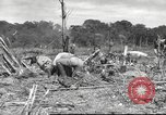 Image of C-47 Skytrain aircraft Burma, 1943, second 6 stock footage video 65675061563