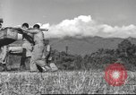 Image of Chinese soldiers Burma, 1943, second 6 stock footage video 65675061564