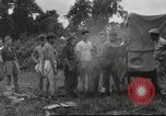 Image of Chindits Kamaing Burma, 1944, second 14 stock footage video 65675061570