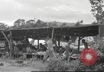 Image of Chindits Kamaing Burma, 1944, second 55 stock footage video 65675061570
