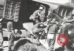Image of British planes India, 1944, second 31 stock footage video 65675061629