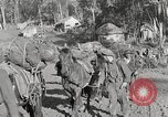 Image of United States1st Battalion China-Burma-India Theater, 1944, second 41 stock footage video 65675061642