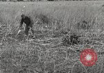 Image of C-47 aircraft Burma, 1944, second 13 stock footage video 65675061654